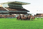 Aintree Racecourse - Liverpool