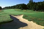 Ashridge Golf Club - Berkhamsted - Golf