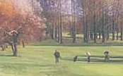 Barnham Broom Golf Resort - Norwich - Golf