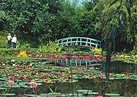 Bennetts Water Gardens Weymouth In 1959 Norman Bennett Started Growing Lilies The Disused Clay Pits Of Erell Brickworks