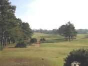 Blackmoor Golf Club - Bordon - Golf