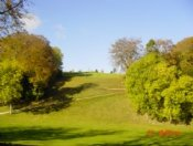 Chiltern Forest Golf Club - Aylesbury - Golf