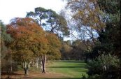 Enville Golf Club - Stourbridge - Golf