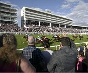 Epsom Downs Racecourse - Epsom - Racecourse