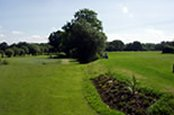 Ferndown Forest Golf Club - Ferndown - Golf