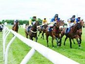 Hotels near  Huntingdon Racecourse - Huntingdon