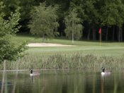 Huntswood Golf Club - Slough - Golf