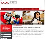 International College of Excellence - University