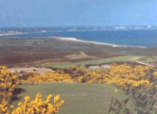 Isle of Purbeck Golf Glub - Swanage - Golf