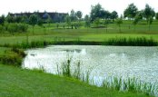 Long Sutton Golf Club - Long Sutton - Golf