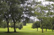 Hotels near  Lutterworth Golf Club - Lutterworth