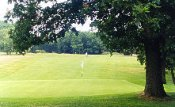Mid-Herts Golf Club - St Albans - Golf