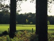 Moors Valley Golf Course - Ringwood - Golf