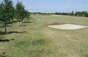 Newton Green Golf Club - Sudbury - Golf