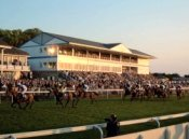 Royal Windsor Racecourse - Windsor - Racecourse