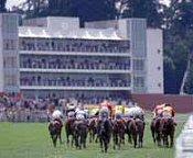 Hotels Near Sandown Racecourse