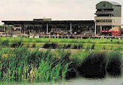 Southwell Racecourse - Rolleston - Racecourse