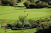 Stockwood Vale Golf Club - Bristol - Golf