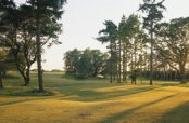 Hotels near  Swaffham Golf Club - Swaffham
